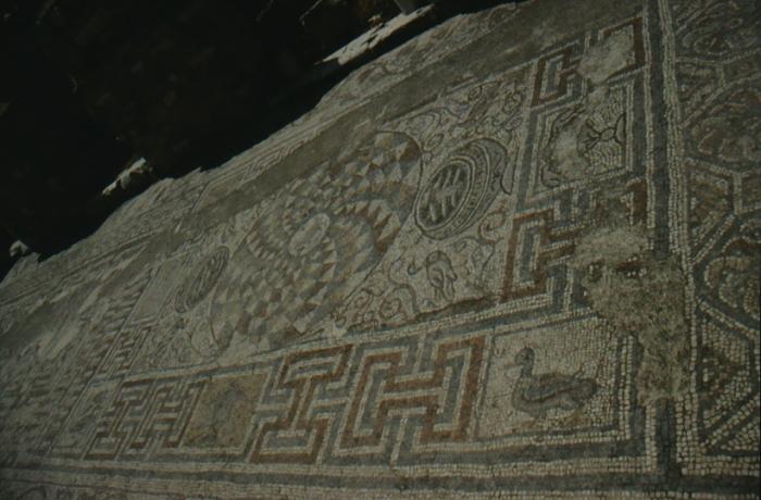 EpEphesus, floor mosaic