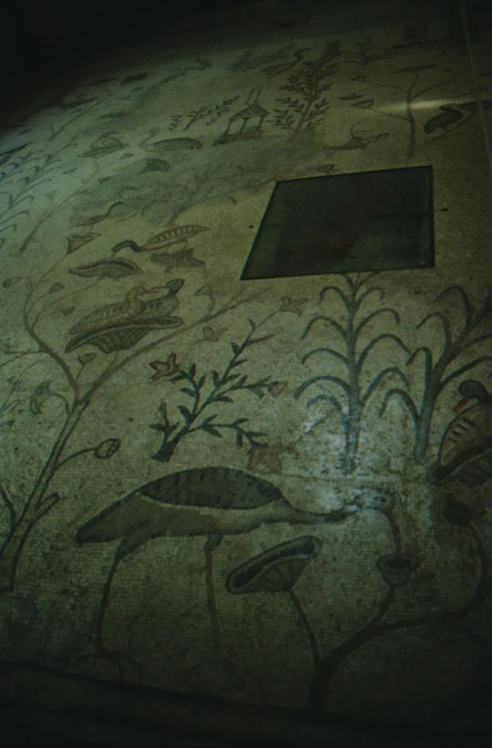 Capernaum, Church of the Multiplication, mosaic