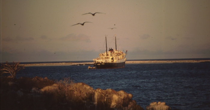 North Seymor, Galapagos