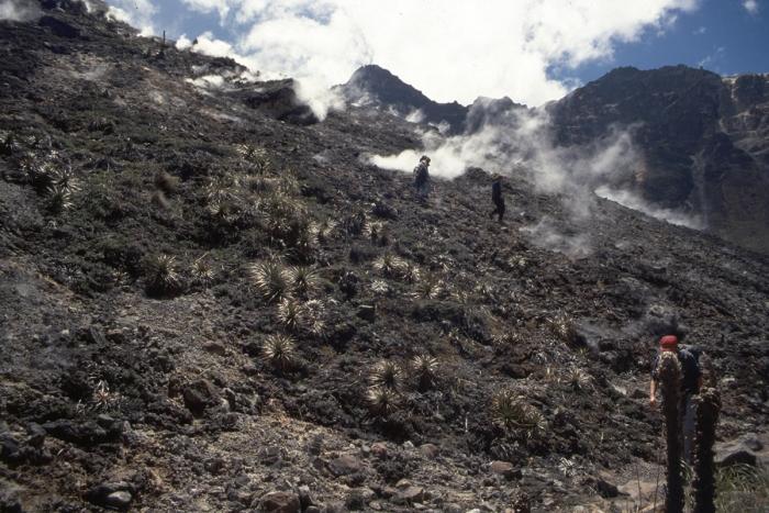 Volcano Pichincha, hill above the main vent